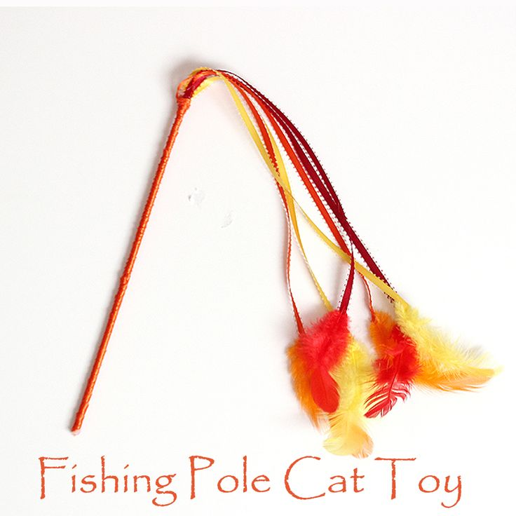 Homemade fishing pole cat toy kid blogger network for Cat fishing pole