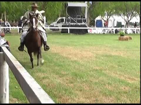 XXVII CONCURSO DE CABALLOS PERUANOS DE PASO/ PERUVIAN HORSES