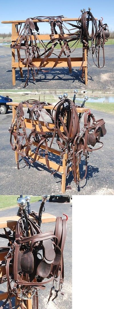 Other Driving Equipment 13376: Amish Made Team Brown Beta Harness Brand New For Mules, Horses, Haflingers BUY IT NOW ONLY: $995.0