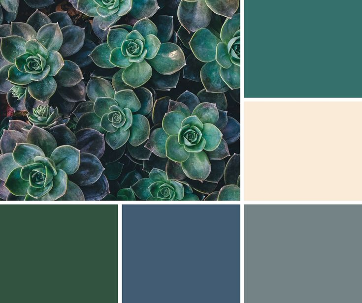 Tan, Teal, Gray, Blue, and Hunter Green hues for a calming atmosphere
