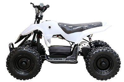 500W Electric ATV QUAD BIKE KIDS 4 WHEELER DIRT BUGGY POCKET BIKE