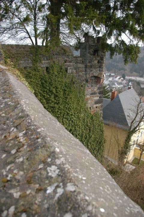 Ruine der Burg Daun