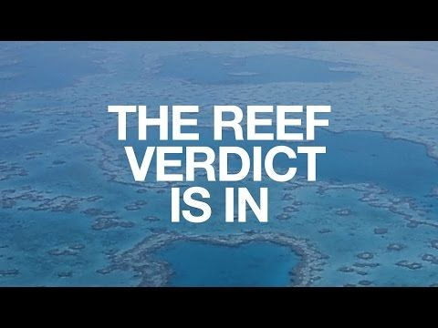 Save the Great Barrier Reef - YouTube