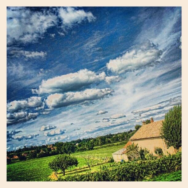 Campagna francese!! #paesaggi #natura #viaggi #francia #bretagna #landscape #nature #travel #france