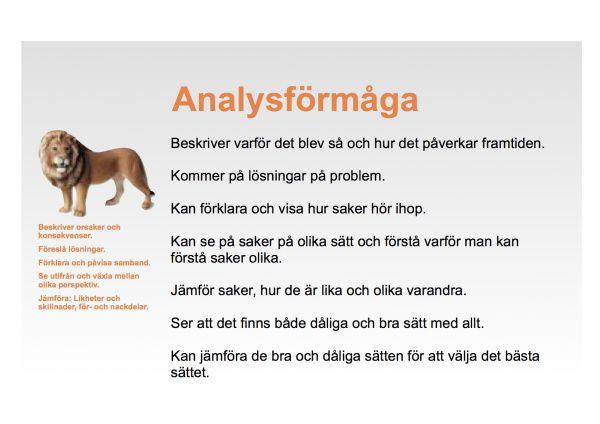 analysformagaPlanschV3
