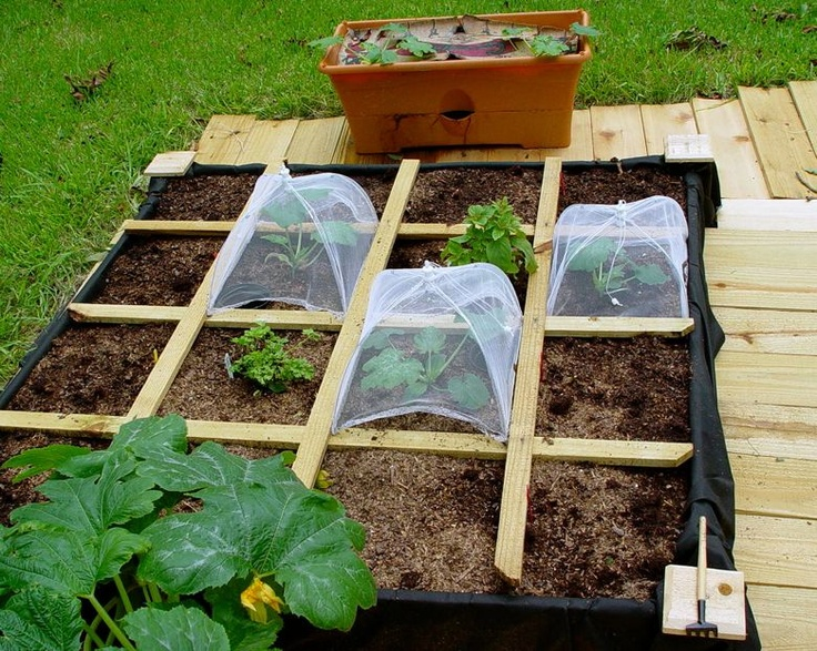 124 Best Images About Garden Inspiration On Pinterest Johnny Seed Raised Beds And Homemade