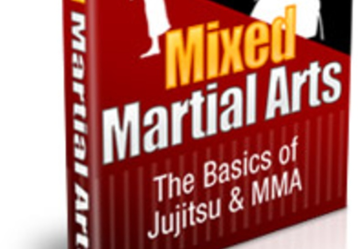 Give You The Complete Guide to Finally Understanding Mixed Martial Arts for $5, on fiverr.com