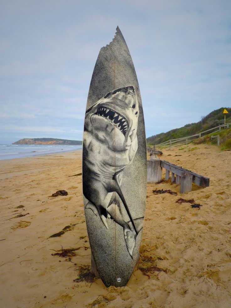 Shark Bite,Old surfboards given new life as artwork,#artpeople