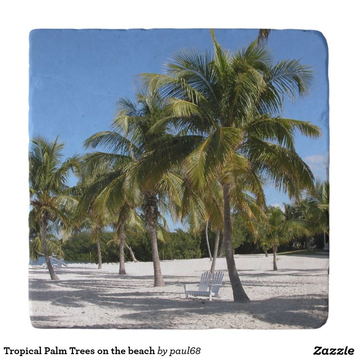 Tropical Palm Trees on the beach Trivets