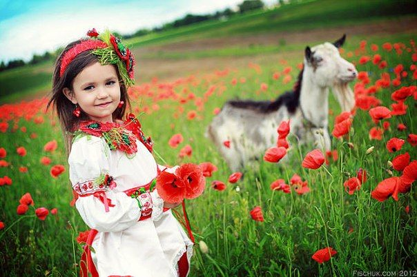 Cute Ukrainian girl with cute Ukrainian goat and poppies