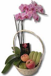 elegante orchidea con cesto di frutta e cioccolata