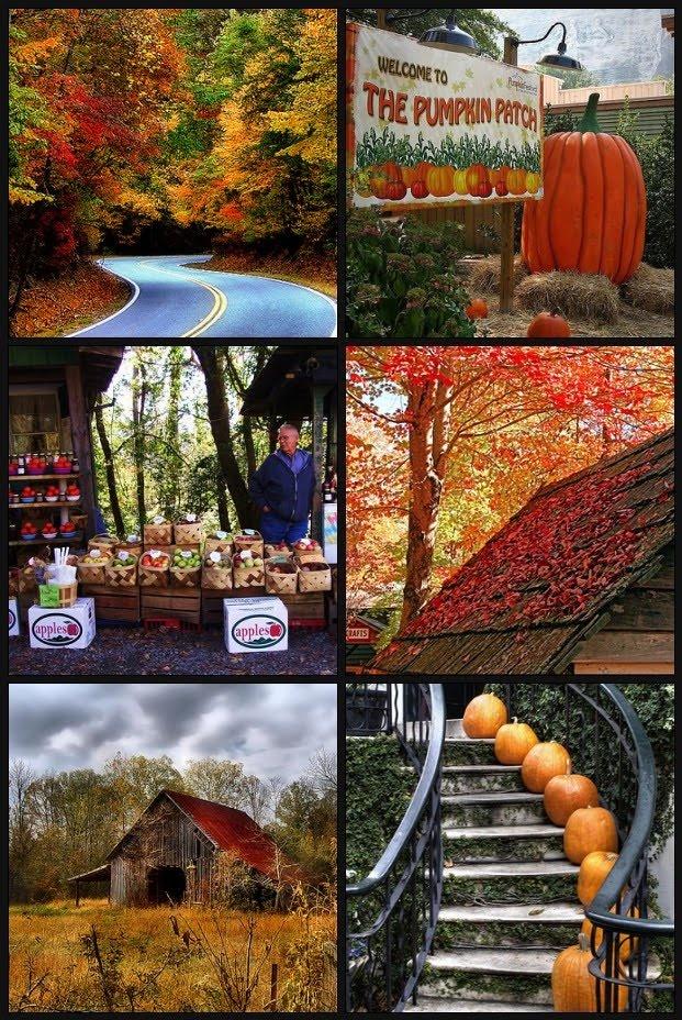 Fall in Georgia...Love it!