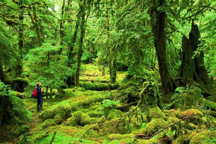 Gwaii Haanas National Park Reserve in Haida Gwaii, Queen Charlotte Islands, BC.