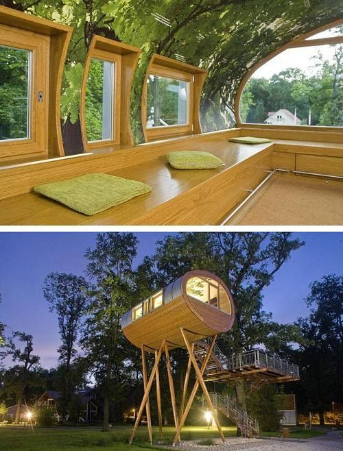 Baumraum's World of Living Tree House (Rheinau-Linx/ Germany): http://curious-places.blogspot.co.nz/2014/01/baumraums-world-of-living-tree-house.html