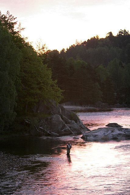 Check out this great website(fly fishing lines|fly fishing reel