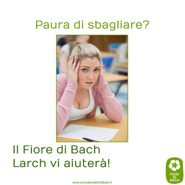 Larch