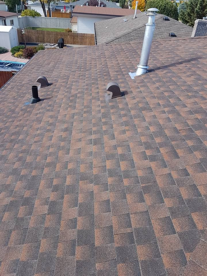 beautiful asphalt shingles roof replacement edmonton homes rh pinterest com