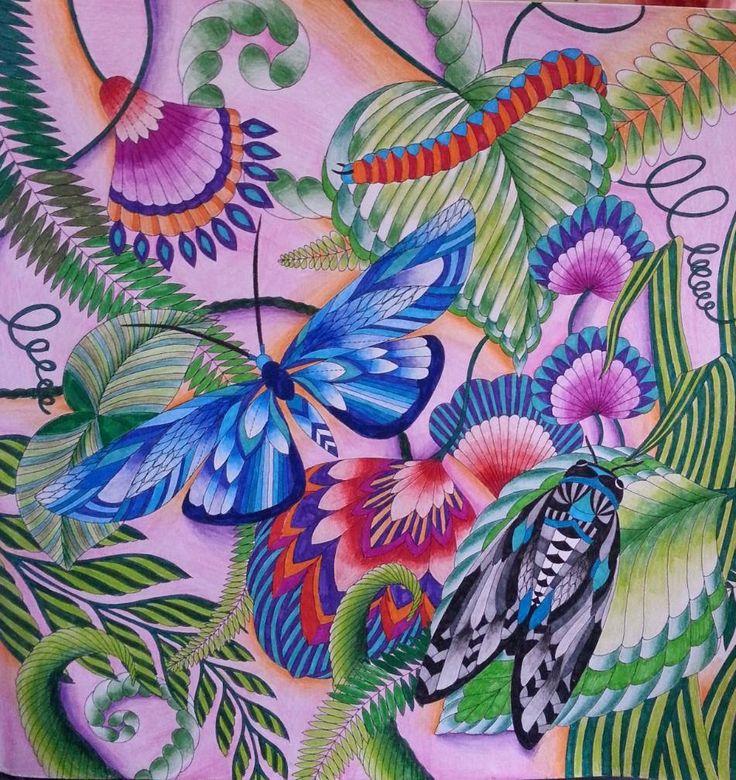 Milliemarotta Tropicalwonderland Colour TherapyPencil ArtDoodle ArtArt SuppliesDiy ArtAnimal KingdomColored Pencil TutorialAdult ColoringColouring