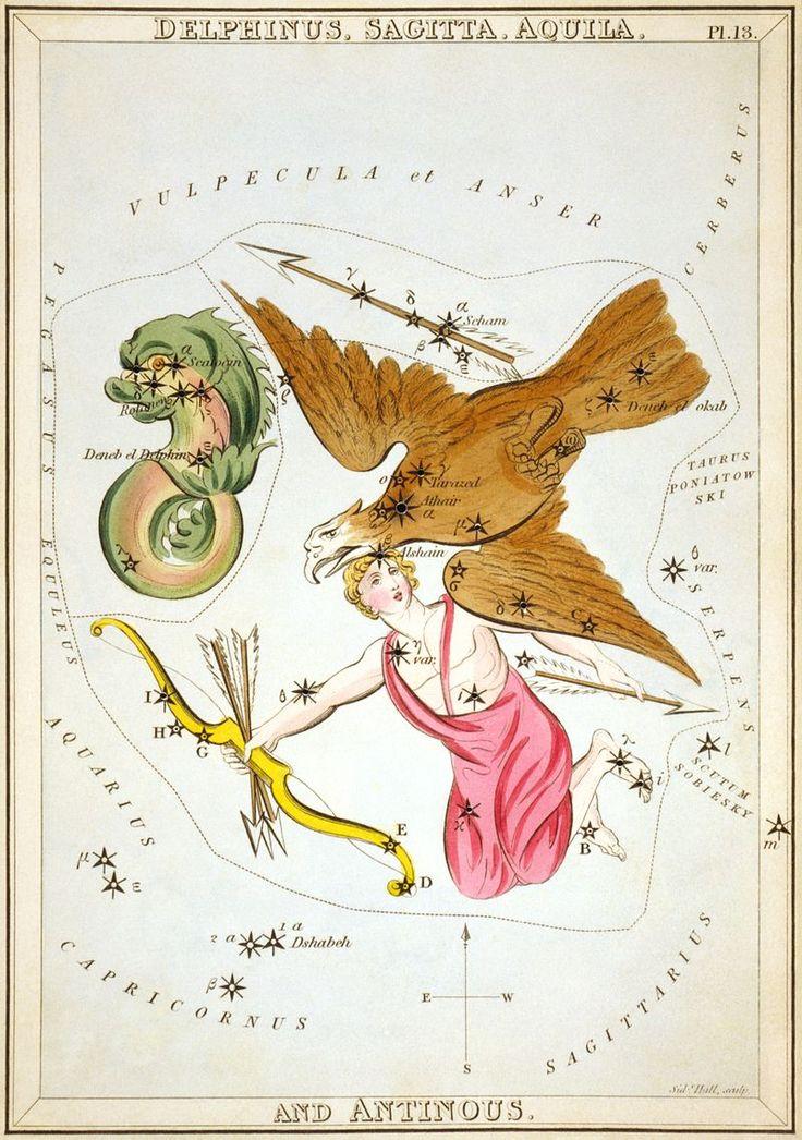 Sidney Hall - Urania's Mirror - Delphinus, Sagitta, Aquila, and Antinous - Aquila (constellation) - Wikipedia