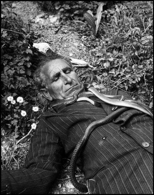 David Seymour 1951 ITALY. Cocullo. 1951. Francesco Jovine, the medicine man of…
