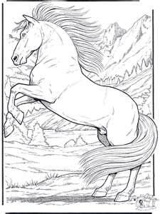 68 best horse colouring pages images on pinterest | coloring books ... - Challenging Animal Coloring Pages