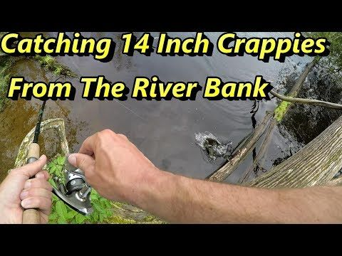 Best 25 crappie fishing ideas on pinterest walleye for How to fish for crappie from the bank