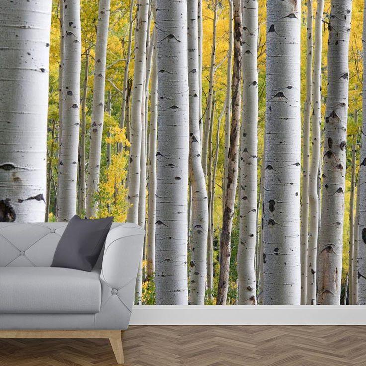 Een tropische sfeer in jouw woonruimte? Het fotobehang berkenbomen geeft de look die jij zoekt. Het fotobehang is op maat en in diverse typen behang verkrijgbaar. Je krijgt altijd eerst een GRATIS digitale drukproef, zodat je precies kunt zien wat je hebt besteld. #fotobehang #behang #vliesbehang #behangen #vlies #zelfklevend #diy #fotomuur #fotoprint #muur #interieur #bos #bossen #berk #berkenboom #natuur #natuurlijk #bomen