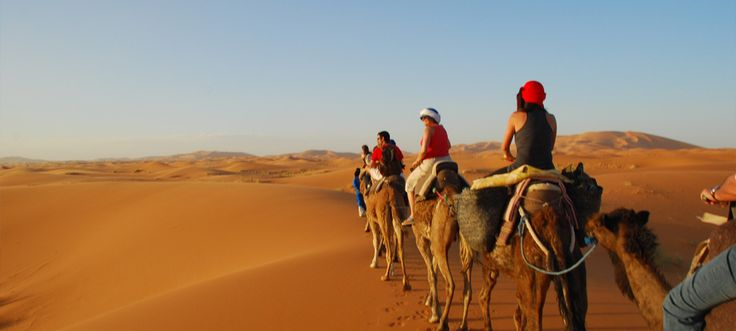 #LuxuryTripMorocco is the Ideal way to truly experience the journey as well as the destination and the diversity that is Morocco. http://camelsafaries.livejournal.com/1880.html