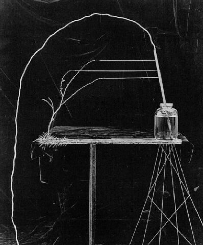 Untitled (Jar and Wire), 1987