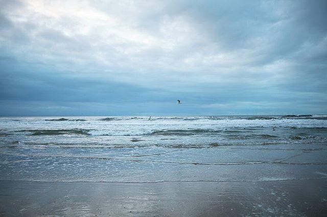 Ik heb vandaag geen tijd om te haasten.  #ontspannen #ikbenthuis #strand #zee #zeemeeuw #zand #winter #beachtime #geentijdvoorhaast #onthaasten #dutchbeachlife