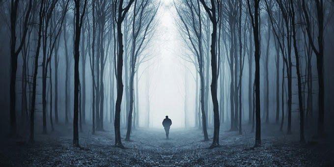 Conspiracy Feeds: Τρομακτικές ιστορίες: Έξι μυστήρια για γερά νεύρα!...