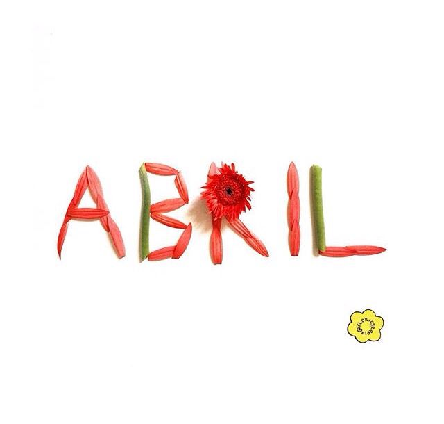 Diga oi para o novo!  Bem vindo Abril. @floriografia #abril #april
