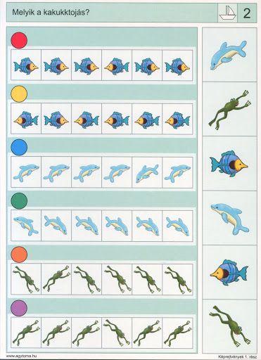 Logico --Képrejtvények 1 - Katus Csepeli - Picasa Webalbumok