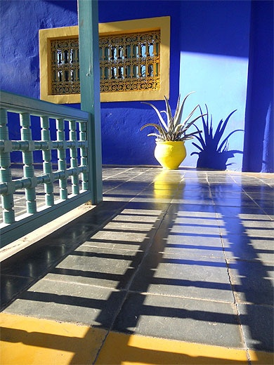 jeu d 39 ombre et de lumiere jardin de majorelle maroc set of shadow and light garden of. Black Bedroom Furniture Sets. Home Design Ideas