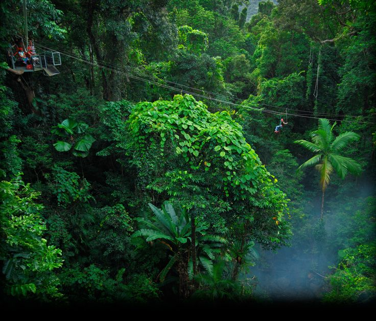 Self-Drive Itineraries - Destination Daintree Visitors Guide