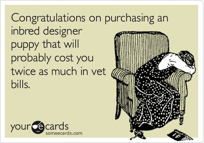 Congratulations on purchasing an inbred designer puppy that will probably cost you twice as much in vet bills.