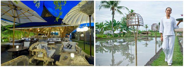 Sardine Bali