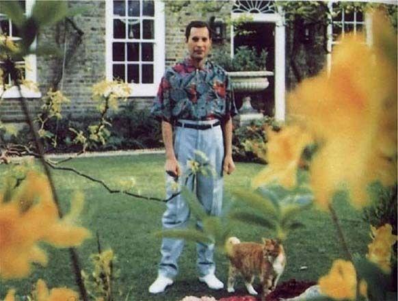 Essas foram as últimas fotos de 16 pessoas famosas antes de morrerem  Esta é a última foto tirada de Freddy Mercury, em 1991, antes do líder do Queen morrer de pneumonia resultante da AIDS.