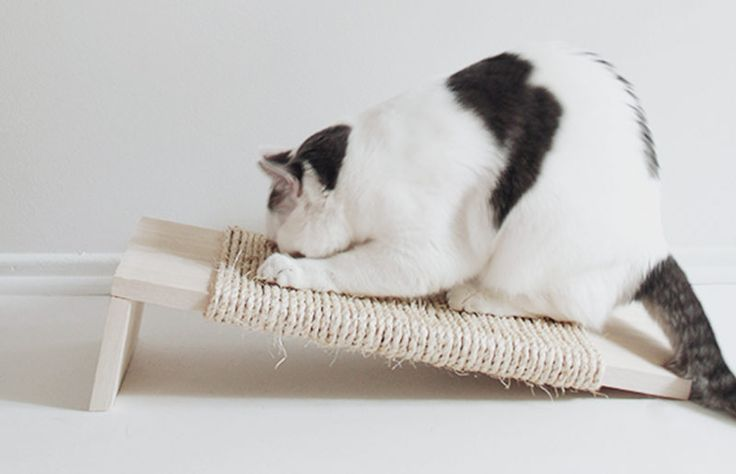 Arranhador de gato faça-você-mesma