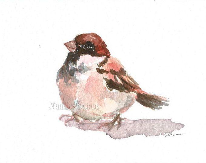 Mejores 73 imágenes de burung 1 en Pinterest   Pájaros bonitos ...