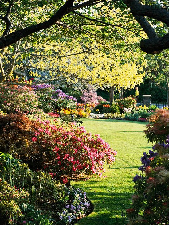 Yard with garden borders
