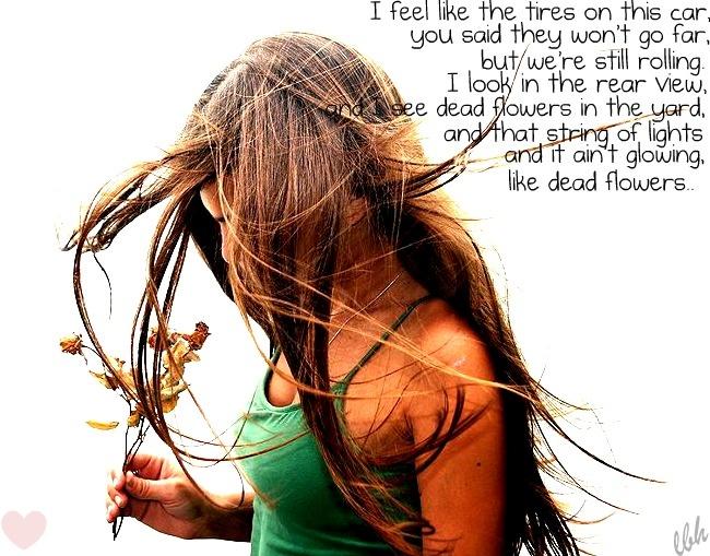 """""""Dead Flowers"""" -Miranda Lambert"""