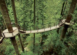 Capilano Suspension Bridge Park | Top Tourist Attraction in Vancouver BC