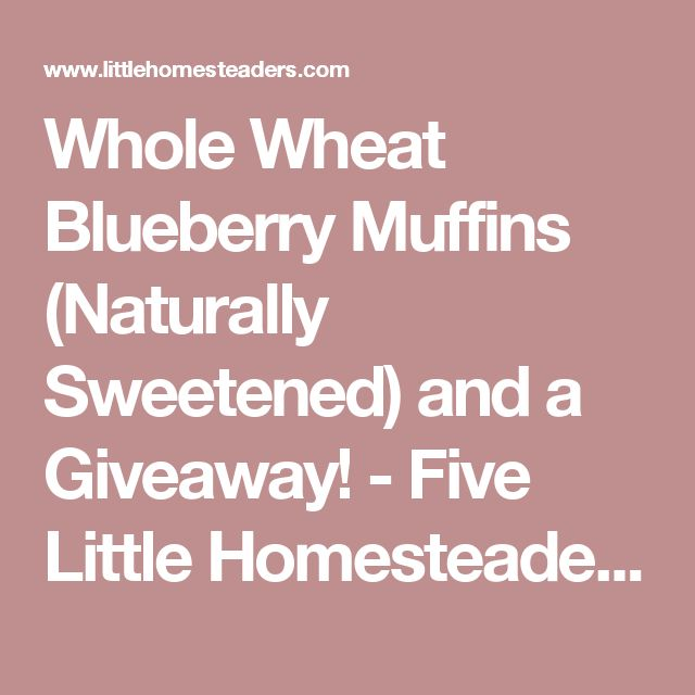 Whole Wheat Blueberry Muffins (Naturally Sweetened) and a Giveaway! - Five Little Homesteaders