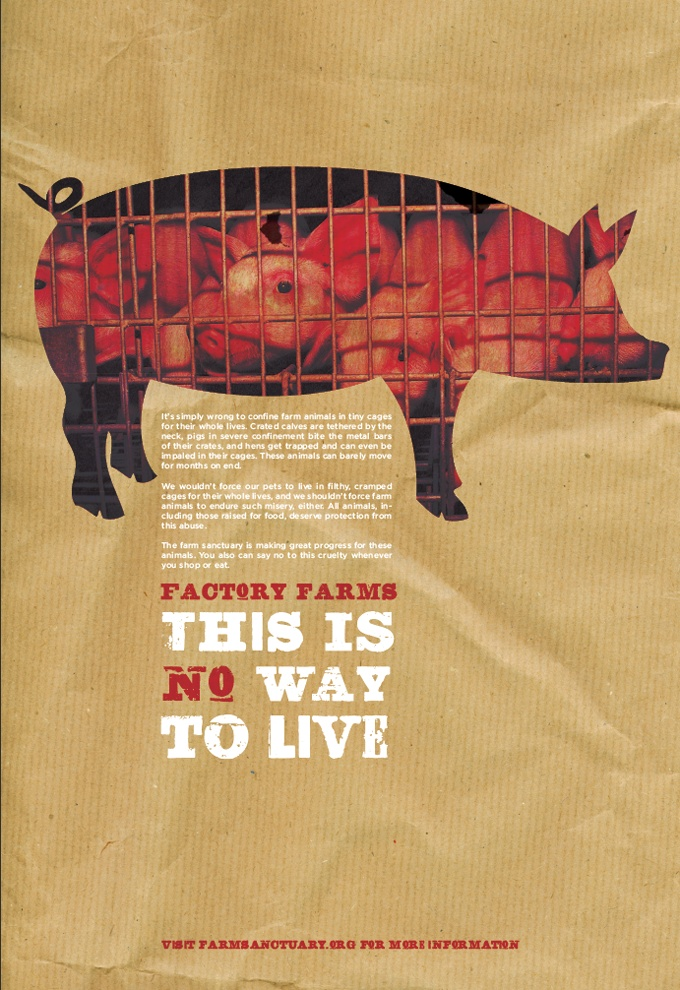 Intensive pig farming can be attrocious. Pork from sources that are illegal in the UK should not be sold in UK stores.  http://www.ciwf.org.uk/farm_animals/pigs/welfare_issues/default.aspx