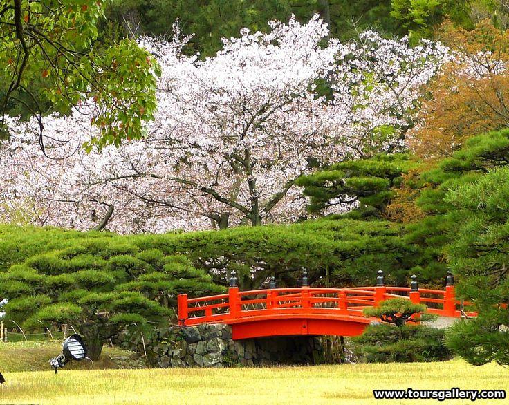 japanese cherry blossom garden 2014 japan cherry blossom gardens tour and art museums