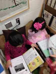 Transforming our Learning Environment into a Space of Possibilities: Documentation Books