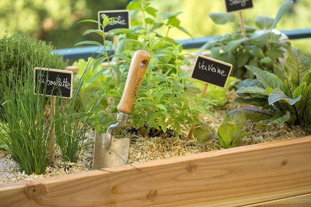 les 58 meilleures images du tableau jardinage et entretien. Black Bedroom Furniture Sets. Home Design Ideas