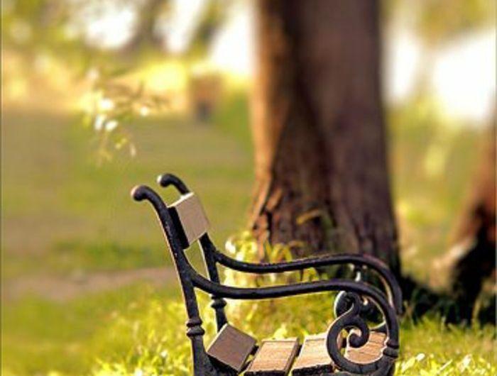 carr potager sur pied leclerc balancelle de jardin. Black Bedroom Furniture Sets. Home Design Ideas
