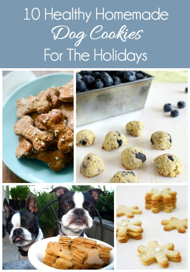 10 Healthy Homemade Dog Cookies | http://www.thelazypitbull.com/2014/12/10-healthy-homemade-dog-cookies/ @inspiredmediagr
